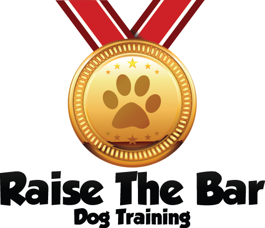 Raise the Bar Dog Training
